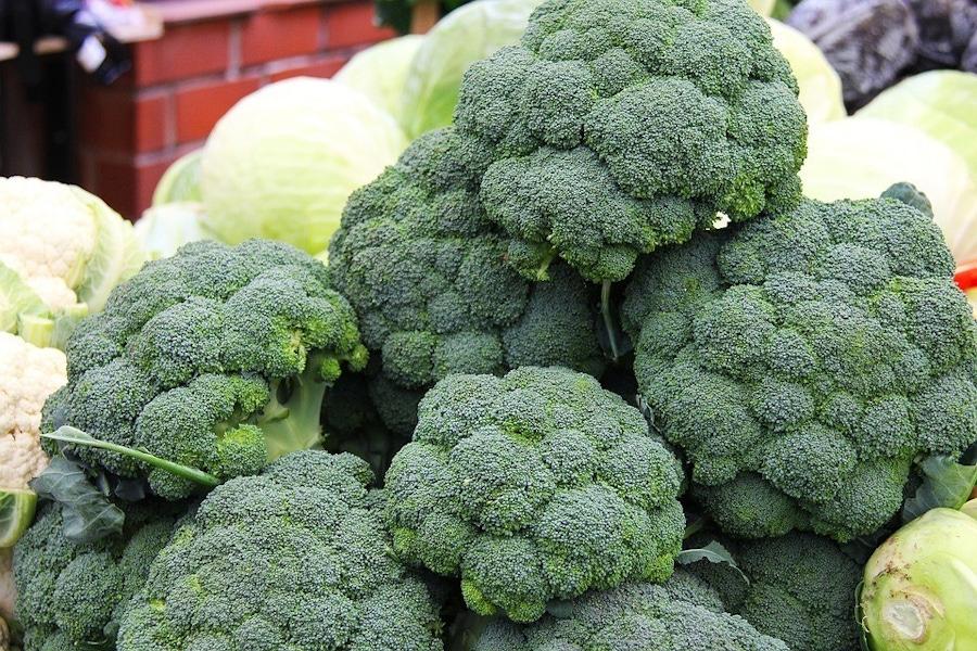 https://thepaleodiet.imgix.net/images/Broccoli.jpg?auto=compress%2Cformat&crop=focalpoint&fit=crop&fp-x=0.5&fp-y=0.5&q=95&w=900