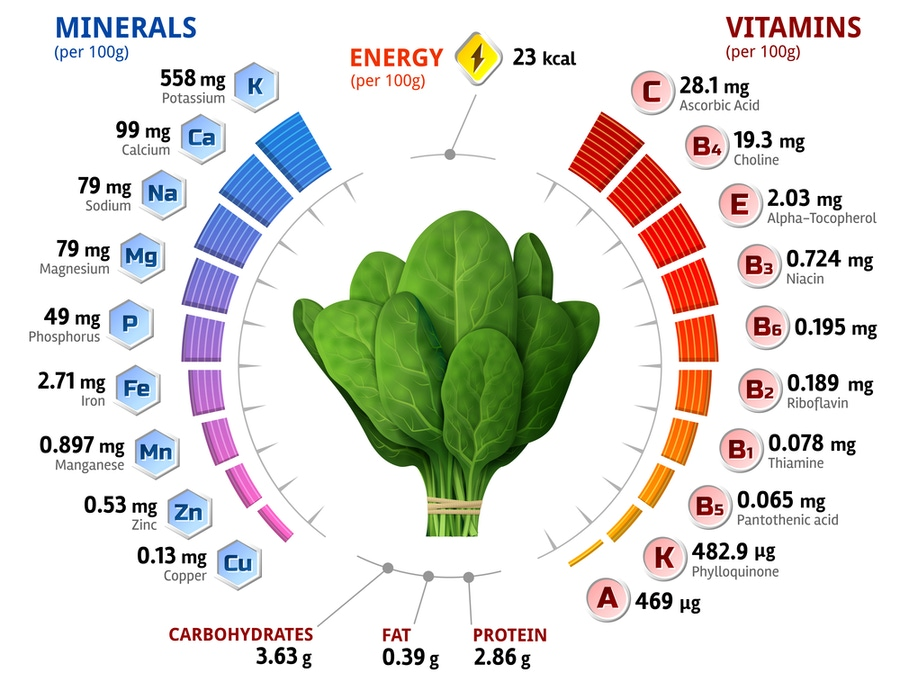 https://thepaleodiet.imgix.net/images/Micronutrient-content-of-spinach-shutterstock_453423319.jpg?auto=compress%2Cformat&fit=clip&q=95&w=900