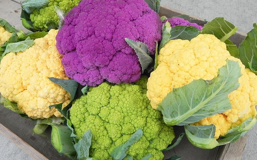 https://thepaleodiet.imgix.net/images/cauliflower.jpg?auto=compress%2Cformat&fit=clip&q=95&w=900