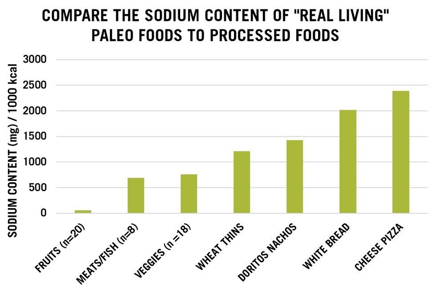 Figure 1. The Sodium Content of Contemporary Paleo Foods to Processed Foods.