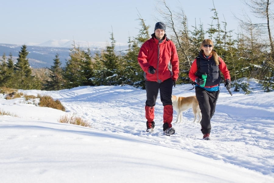 Fun Ways to Keep Fit in the Winter image