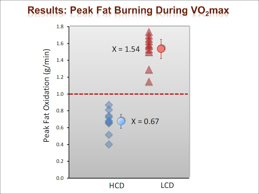 Are Fats The Optimal Primal Fuel For Endurance Athletes? image