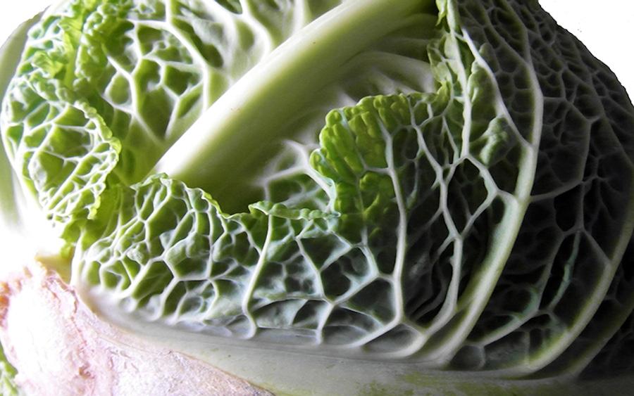 https://thepaleodiet.imgix.net/images/leafy-vegetable.jpg?auto=compress%2Cformat&fit=clip&q=95&w=900