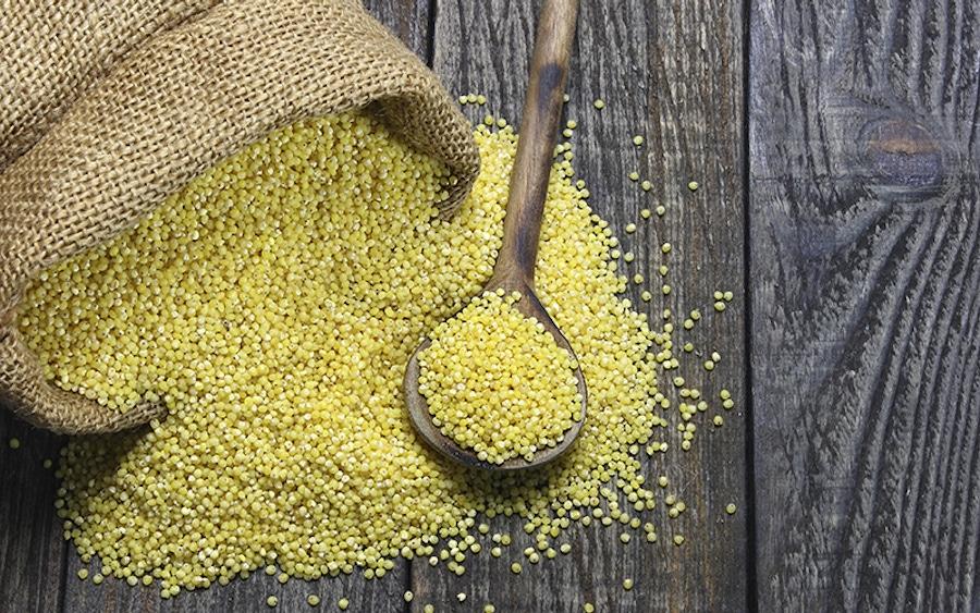 Millet: A Gluten-Free Grain You Should Avoid image