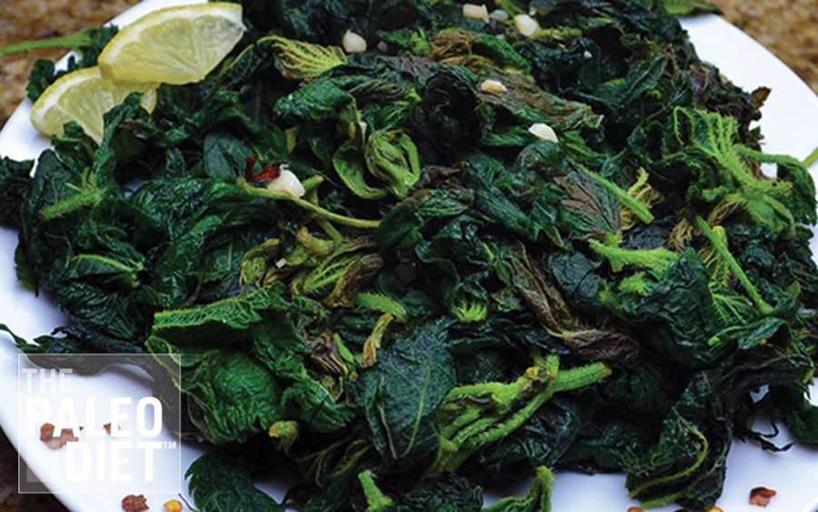 Spring Forward Foraging Wild Greens: Stinging Nettle Sauté image