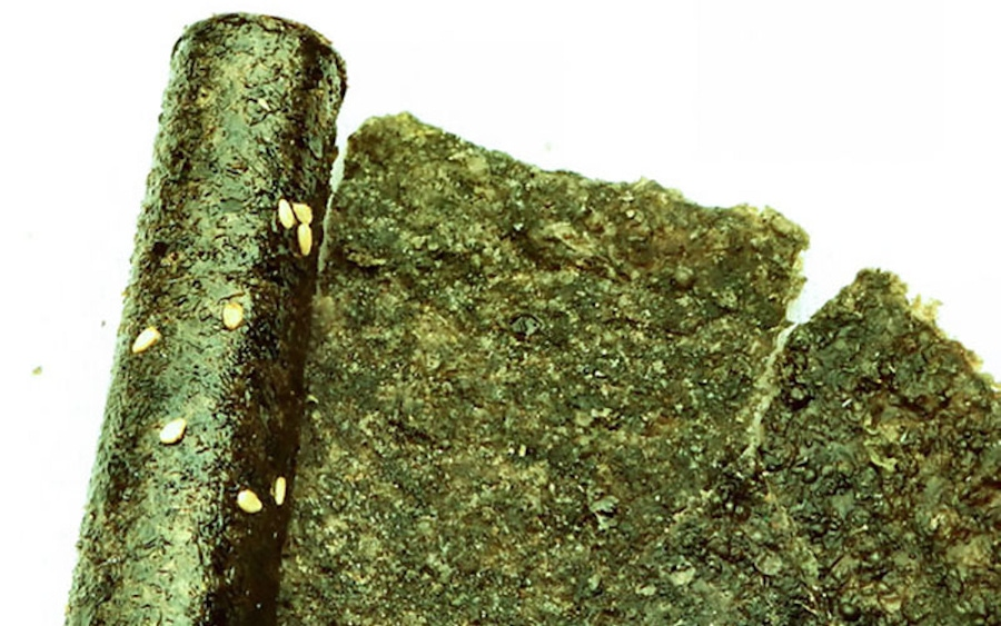 Sea Vegetables: A Mineral-Rich Gold Mine image