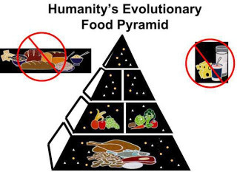 https://thepaleodiet.imgix.net/images/paleo_diet_food_pyramid.jpg?auto=compress%2Cformat&fit=clip&q=95&w=900