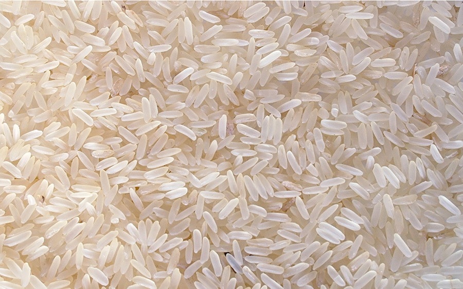 The Rice Diet Misses the 21st Century Mark image