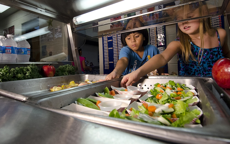 Keep the Kids' Diets On Track…Despite Typical School Lunch Pitfalls image