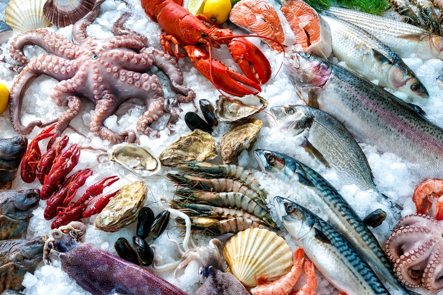A great debate of our time: should I choose wild or farmed fish? image